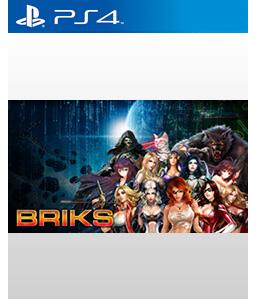 Briks PS4